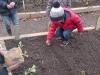 jardinage-17