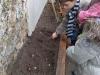 jardinage-29